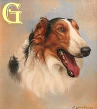 CARL WHITFIELD, miniature oil painting, BORZOI
